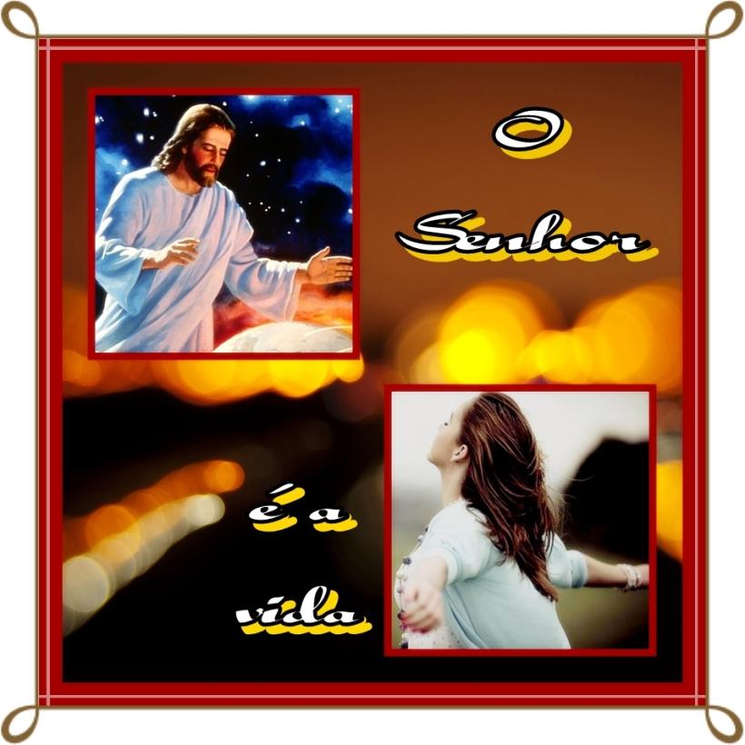 O Senhor é a Vida